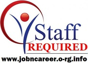 Weekend Staff Required (Cash Pay Jobs)