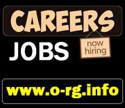 Part Time JOB Openings (Urgent Staff Required)