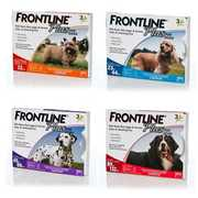 Frontline Plus for Dogs - Flea and Tick Treatment | PetCareSupplies